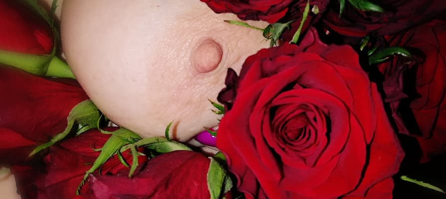 Roses are Red….
